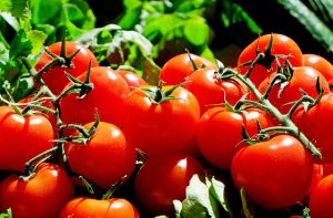 pomidory składnik