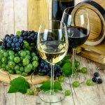 Wina biodynamiczne – hit czykit?